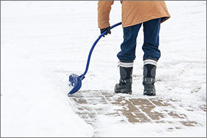 Snow shovels are just one of our best-selling Winter Goods products