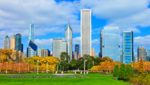 Experience autumn with Ace in Chicago
